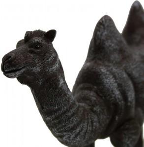 Cara the Camel